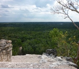 Jungle-clad Cobá from the top of its pyramid