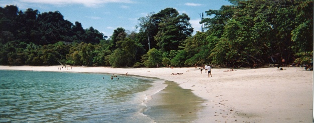 The beach at Manuel Antonio Park is busier than most we saw - and that means spunky monkeys!