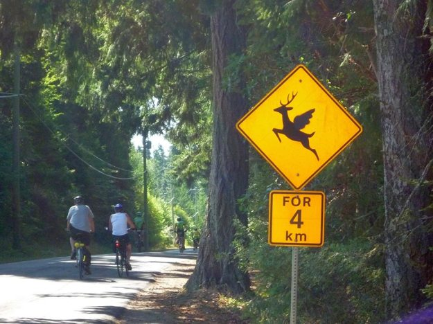 You never know what you might find along the way: road sign on Denman Island, BC